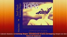FREE PDF  Small Hands Creating Hope Childhood Crafts Bringing Hope in the Face of Cancer  FREE BOOOK ONLINE