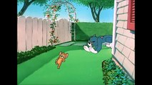 Tom and Jerry, 60 Episode - Slicked-up Pup (1951)