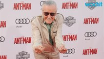 Marvel Fan Theory Pieces Together Story From Stan Lee Cameos