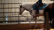 2002 sorrel overo paint gelding for sale-Chapter After Chapter