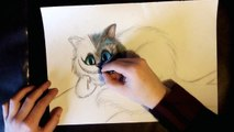 Cheshire Cat (Alice in Wonderland) Speed drawing + Coloring