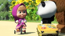 Masha and The Bear - Little Cousin! (Maybe we should be introduced, maybe)