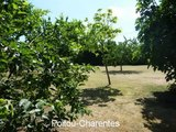 French Property For Sale in near to Archingeay Poitou-Charentes Charente-Maritime 17
