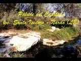 Itinerario subacqueo alla Palude del Capitano Porto Selvaggio - Nardò (Lecce)