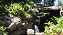 Australia Travel Video Tourism | Best Time To Visit Places In Adelaide Veale Gardens Documentary