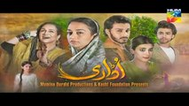 Udaari Episode 3 on Hum Tv in High Quality 24th April 2016