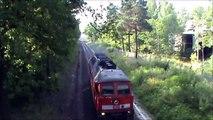Dieselpower in Bernsdorf - Ein Tag mit 233 232, 233 306 & 232 294