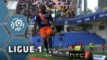 But Jérôme ROUSSILLON (14ème) / Montpellier Hérault SC - ESTAC Troyes - (4-1) - (MHSC-ESTAC) / 2015-16