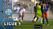 But Stéphane DARBION (20ème) / Montpellier Hérault SC - ESTAC Troyes - (4-1) - (MHSC-ESTAC) / 2015-16