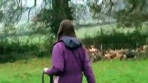 Elle rentre chez elle après trois semaines de vacances. Découvrez la réaction de son cheval lorsqu'il s'en aperçoit...