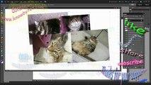 Photoshop Elements 10 Merge layers to decrease file size