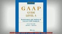 Downlaod Full PDF Free  GAAP Guide Level A 2008 Miller Gaap Guide Free Online