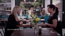 "Greys Anatomy 12x20 Callie and Arizona Fight on Custody of Sofia ""Trigger Happy"""