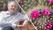 Jardinage : l'entretien des plantes grasses en cinq conseils
