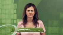 Fundo Passivo Órama Inflação, Rentabilidade Dez/2015 - Órama