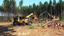 forestry equipment in action, john deere forestry equipment
