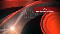 CLC Creative Laguage Center Lausanne-Vevey Suisse