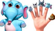 Wild Animal Sounds Finger Family Children Songs - Nursery Rhymes For Kids With Lyrics - 3D Nursery Rhymes For Children