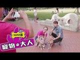 【寵物大人】NANA篇|NANA出門泡帥哥!