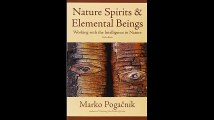 Nature Spirits  Elemental Beings Working with the Intelligence in Nature