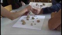 Los fósiles de Fuerteventura, una maravilla arrojada por sus volcanes