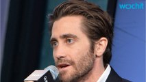 Jake Gyllenhaal's Reservations On Trump