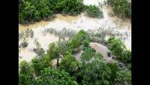 Peru News: Peruvian authorities continue to fight illegal mining in Tambopata