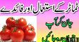 Tamatar Ke Fayde - (Tomatoes) Tamatar Khane Ke Fawaid Benefits Of Tomato Urdu - YouTube_2