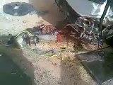 Saudi arabia danger accident