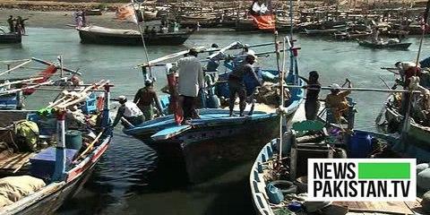 آلودگی کے سمندری زندگی پر اثرات