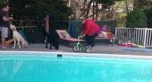 Une maman s'amuse avec le tricycle de son enfant
