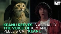 Keanu Reeves Is Actually The Voice Of The Cat In 'Keanu'