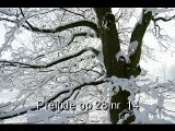 Chopin préludes op 28 by Cortot continued