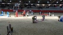 Les poneys en compétition à Poneys sous les pommiers