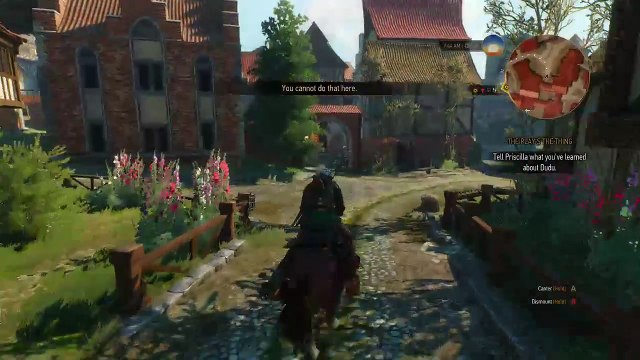 The Witcher 3 - Part 28 (The Play's The Thing)