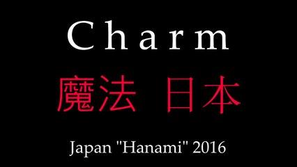 Charm / Zauroczenie - Hanami 2016 (pokaz zdjęć z Japonii / photoshow from Japan)