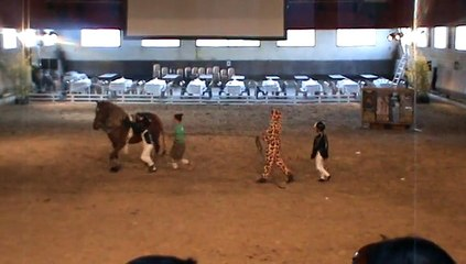 Le club le petit sam en voltige pendant Equestrium au concours spectacle au haras d'Uzés