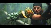 Des Ninjas se battent contre des pastèques avec des sabres ! Fruit Ninja en vrai !