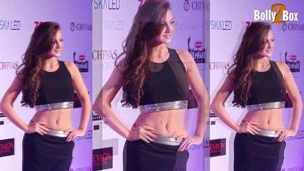 Elli Avram Hot Navel Exposing | Bollywood Celebs