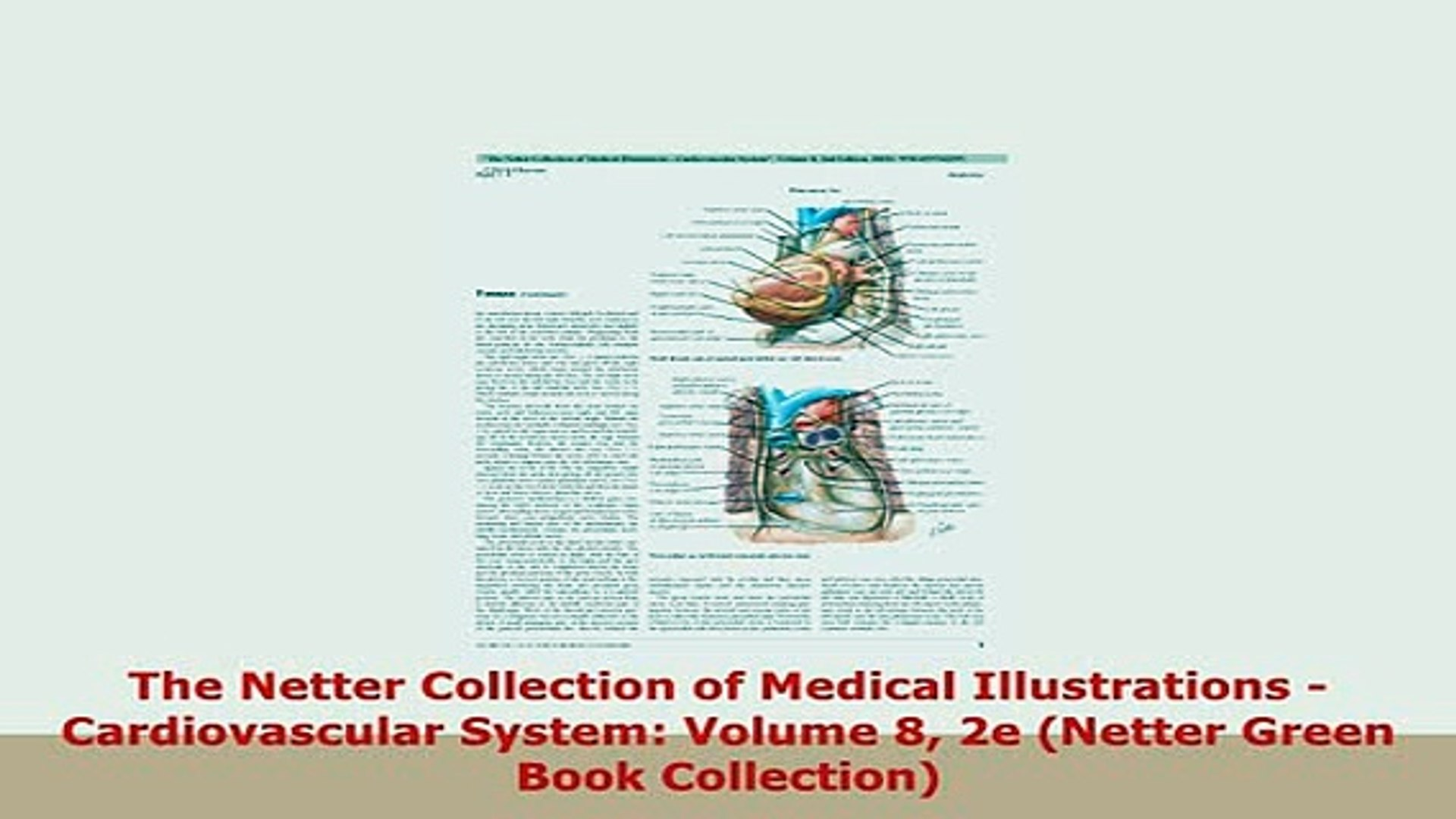 The Netter Collection of Medical Illustrations - Cardiovascular System: Volume 8, 2e