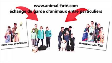 Garde de chien entre particuliers à Nantes, Caroline témoigne de ses échanges Animal Futé