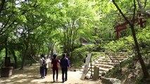 Korean Folk Village and Everland   South Korea VLOG May 01, 2016