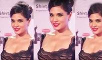 Richa Chadda Hot In Transparent Dress
