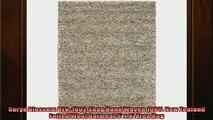 Varies  Surya Blossom BLO1002 Shag Hand Woven 100 New Zealand Felted Wool Oatmeal 5 x 8 Area
