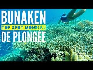 INDONÉSIE (Sulawesi) : Bunaken Top 5 mondial pour la plongée