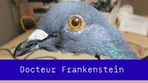 Docteur Frankenstein - Pépites du 05/05 - CANAL+