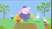 Peppa Pig en Español   Temporada 3   Capitulo 33   Primavera   Peppa Pig 2016