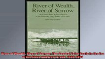 READ book  River of Wealth River of Sorrow The Central Zaire Basin in the Era of the Slave and Ivory  FREE BOOOK ONLINE