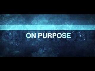 Dougie F Feat Pitbull - On Purpose