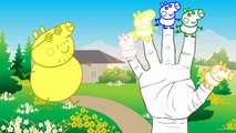 Peppa Pig Finger Family peppa pig Nursery Rhymes Lyrics and peppa pig en español capitulos completos